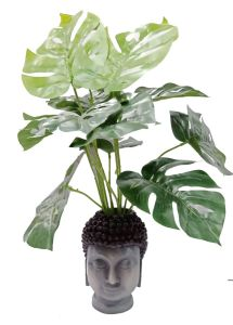Paras Magic Buddha Face Planter ( 5x5.5x8inch)