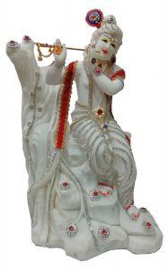 Paras Magic Krishna Ji (13x9x20 inch)